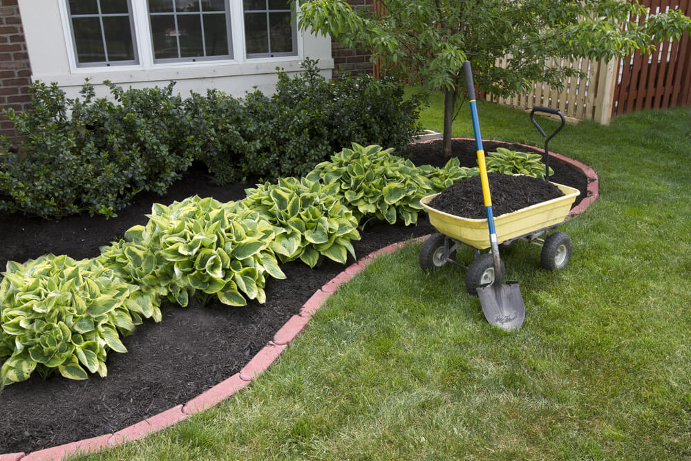 Backyard Landscaping Design in Guelph