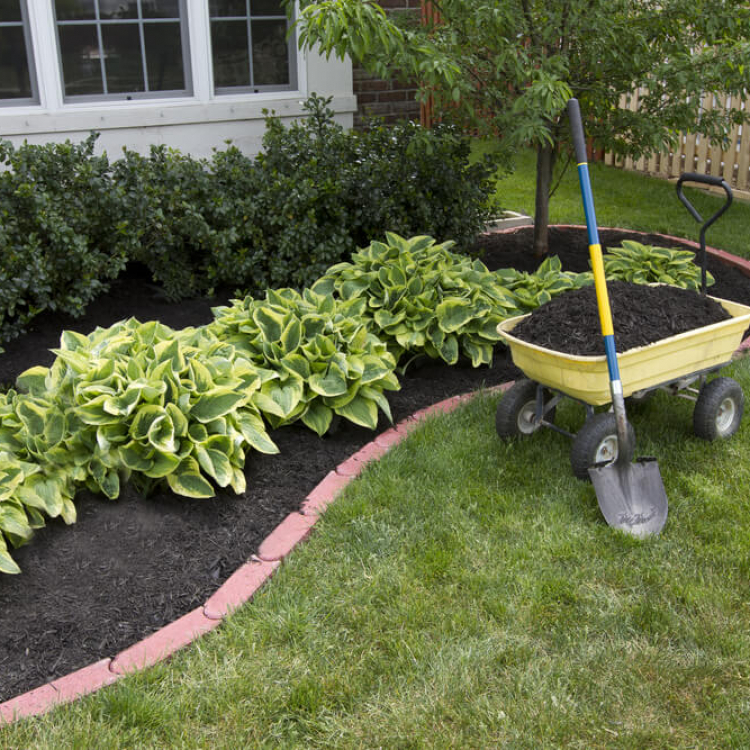 Backyard Landscaping Ideas in Guelph