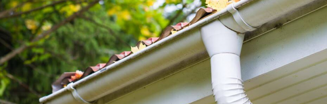 4 Tips for Fall Home Maintenance in Guelph