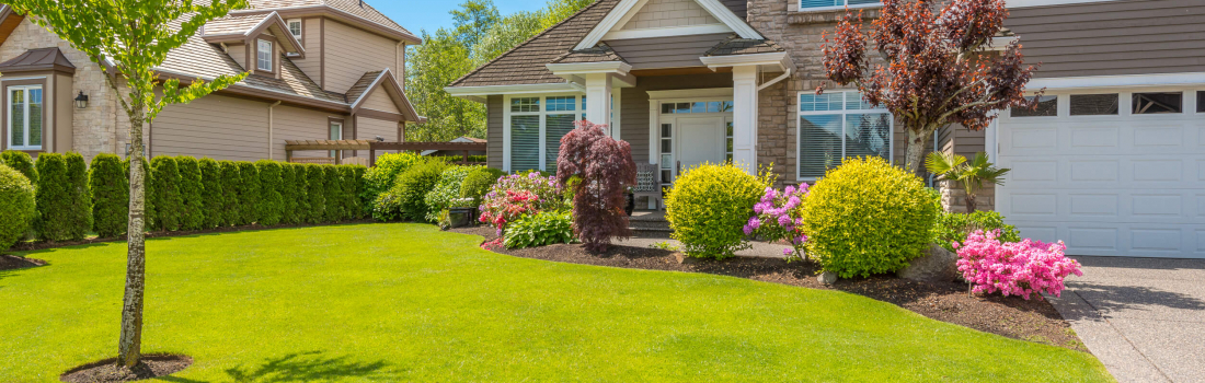 Landscaping Tips & Trends for 2016